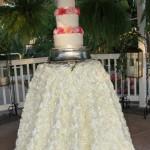 The cake (in the gazebo)